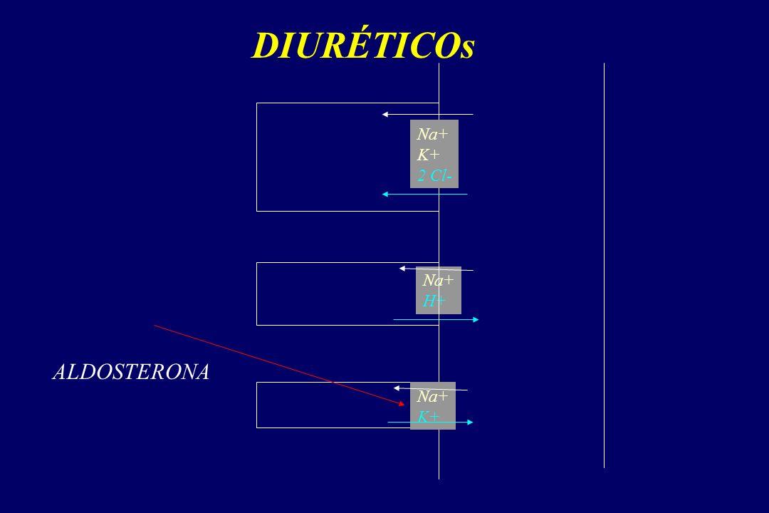 DIURÉTICOs Na+ K+ 2 Cl- Na+ H+ ALDOSTERONA Na+ K+