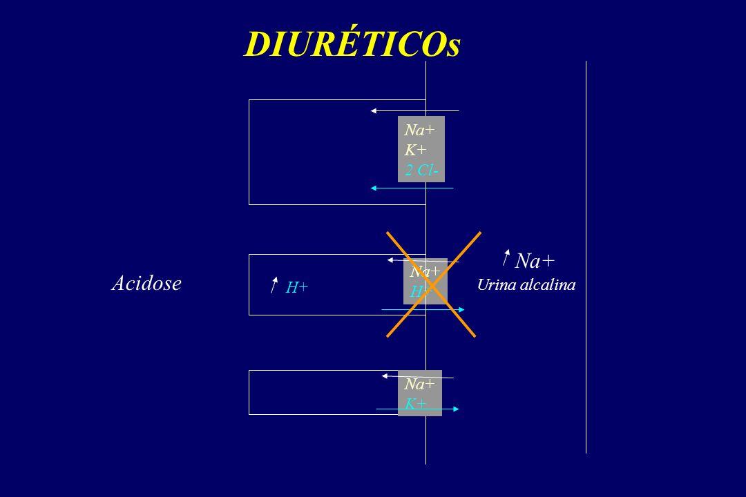 DIURÉTICOs Na+ K+ 2 Cl- Na+ Na+ H+ Acidose H+ Urina alcalina Na+ K+