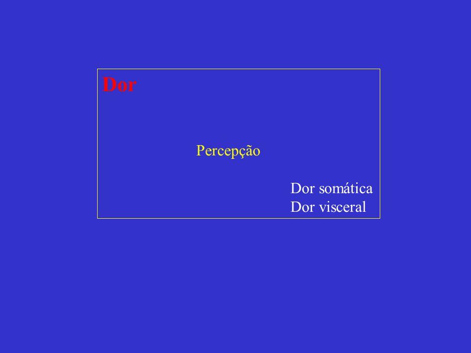 Dor Percepção Dor somática Dor visceral