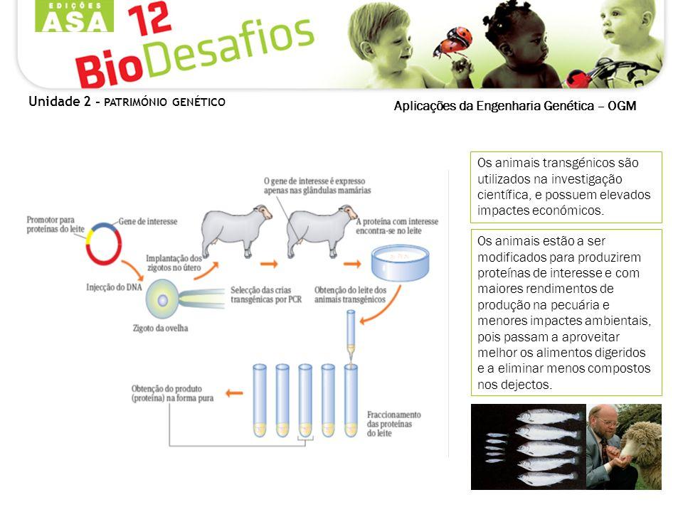 Aplicações da Engenharia Genética – OGM