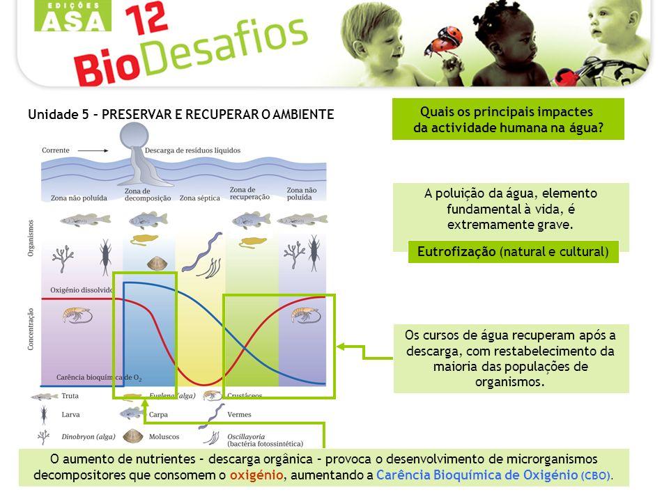 Quais os principais impactes da actividade humana na água