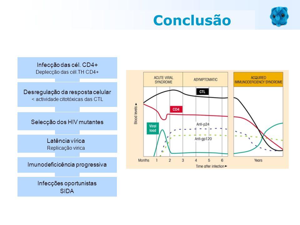 Conclusão Infecção das cél. CD4+ Desregulação da resposta celular