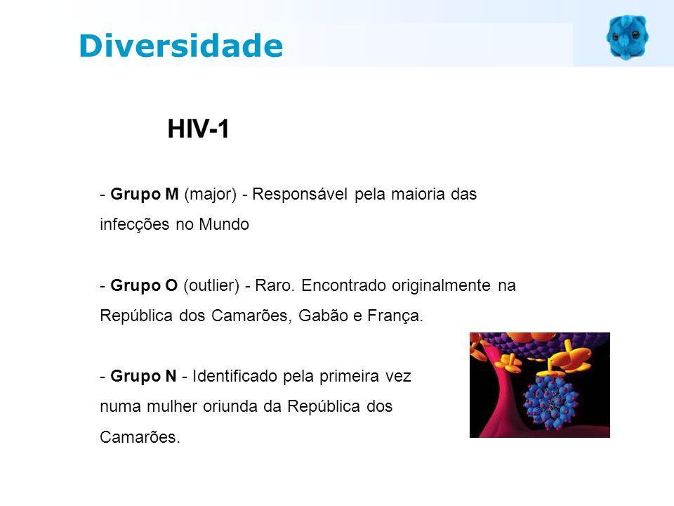 DiversidadeHIV-1. - Grupo M (major) - Responsável pela maioria das infecções no Mundo.