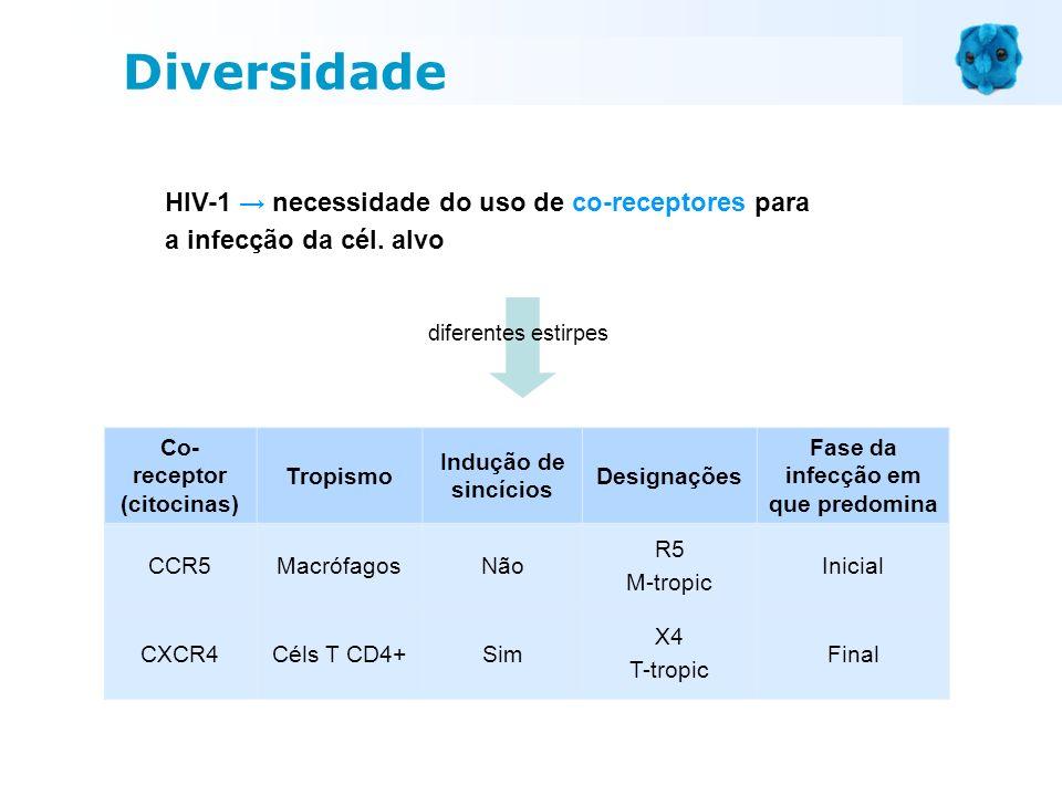 Co-receptor (citocinas) Fase da infecção em que predomina