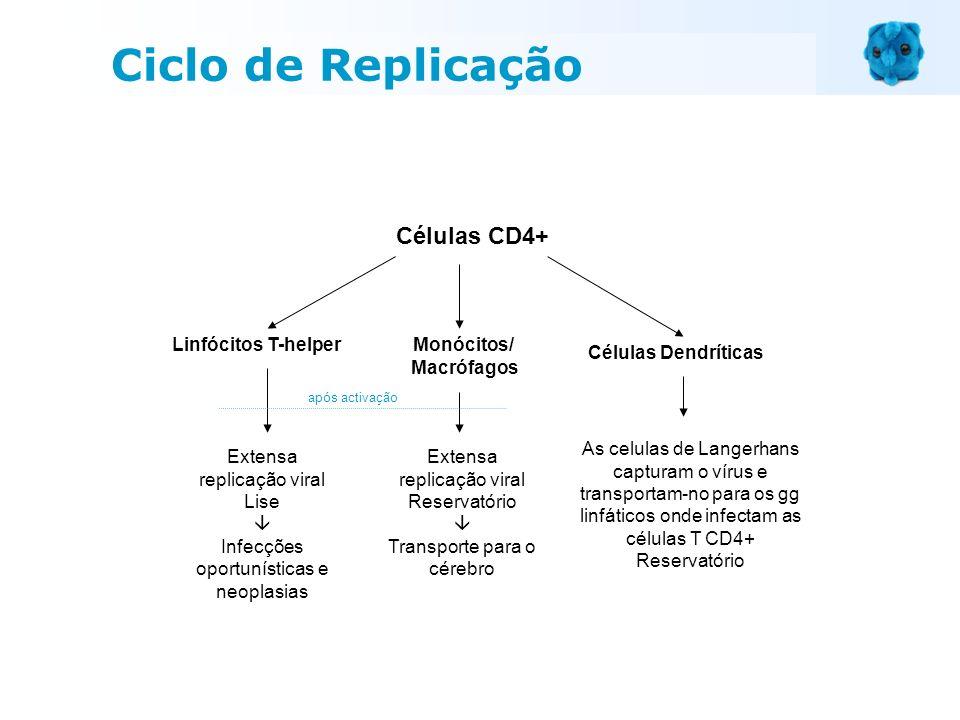 Ciclo de Replicação Células CD4+ Linfócitos T-helper Monócitos/