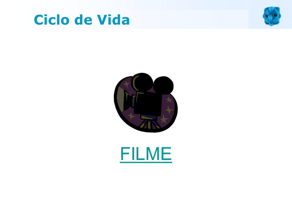 Ciclo de Vida FILME