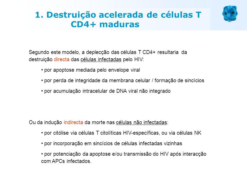 1. Destruição acelerada de células T CD4+ maduras