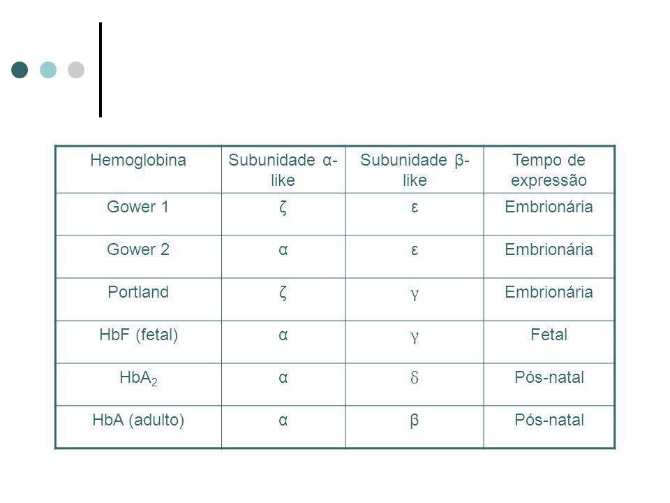 Hemoglobina Subunidade α-like. Subunidade β- like. Tempo de expressão. Gower 1. ζ. ε. Embrionária.
