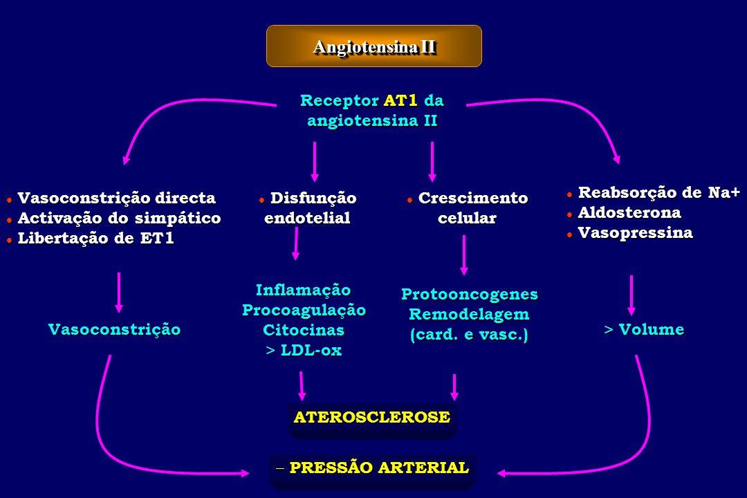 Angiotensina II Receptor AT1 da angiotensina II Reabsorção de Na+