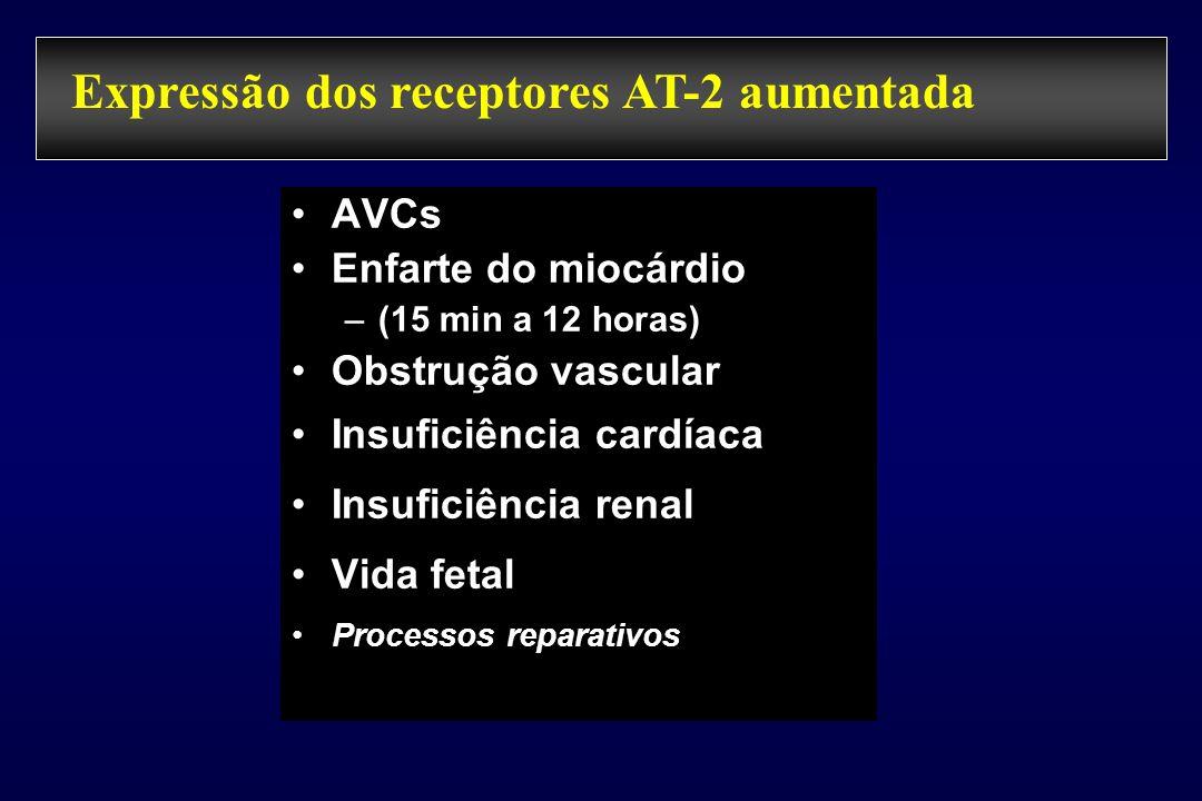 Expressão dos receptores AT-2 aumentada