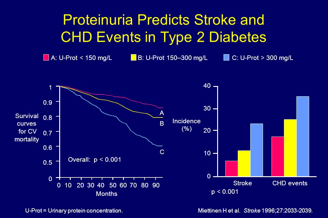 Proteinuria Predicts Stroke and CHD Events in Type 2 Diabetes