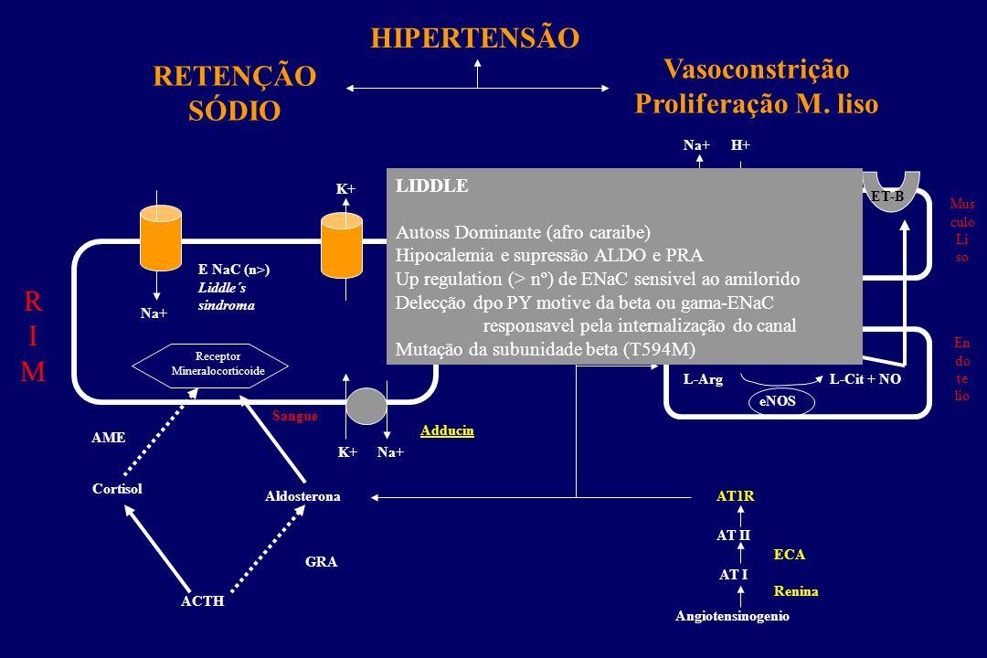 HIPERTENSÃO Vasoconstrição Proliferação M. liso RETENÇÃO SÓDIO