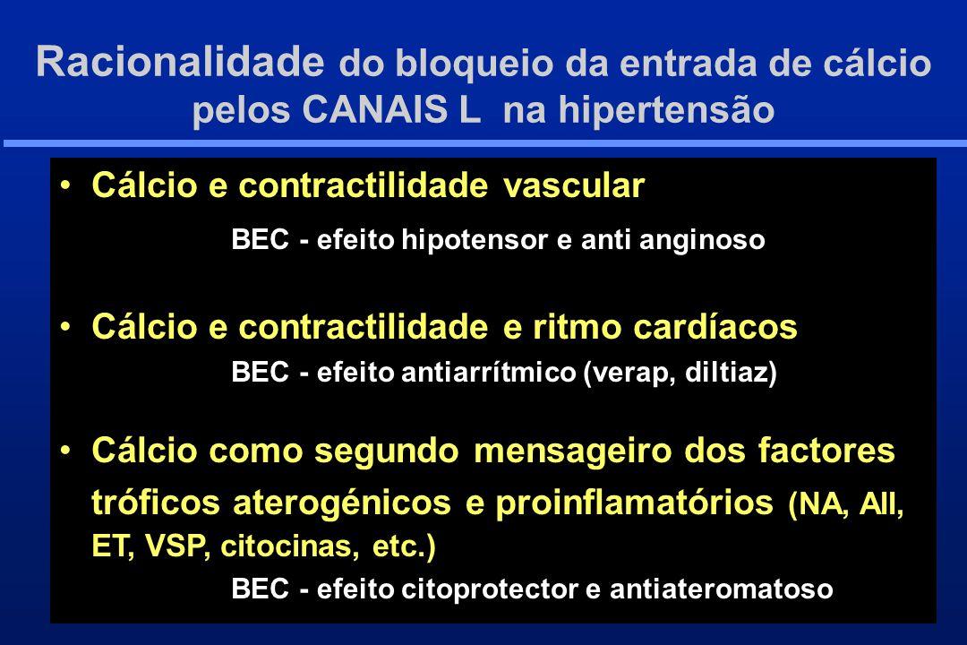 Racionalidade do bloqueio da entrada de cálcio pelos CANAIS L na hipertensão