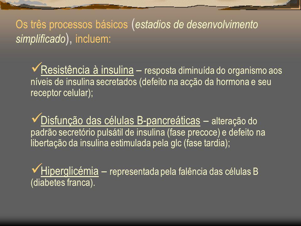 Os três processos básicos (estadios de desenvolvimento simplificado), incluem: