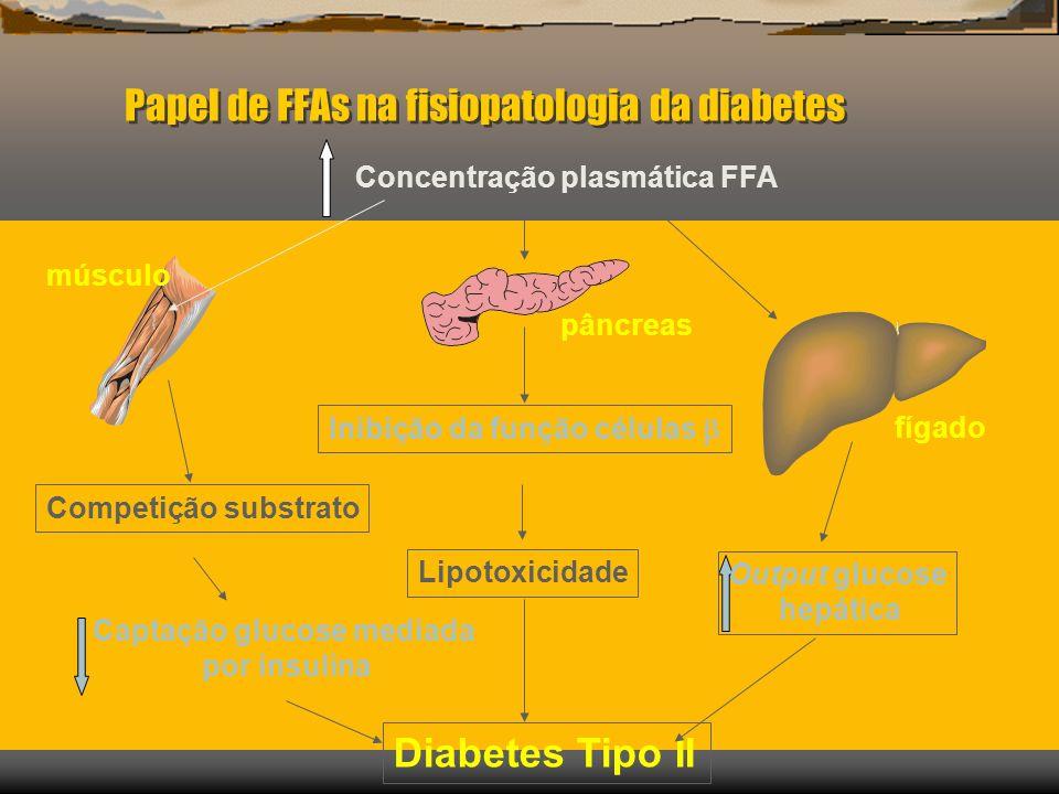 Papel de FFAs na fisiopatologia da diabetes