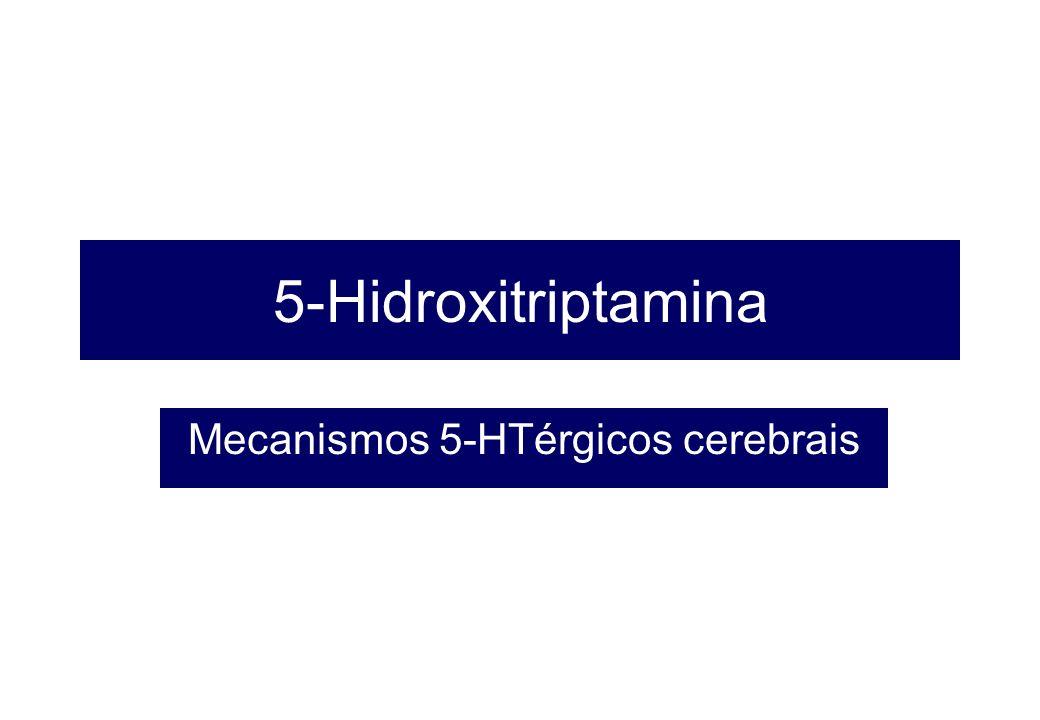 Mecanismos 5-HTérgicos cerebrais