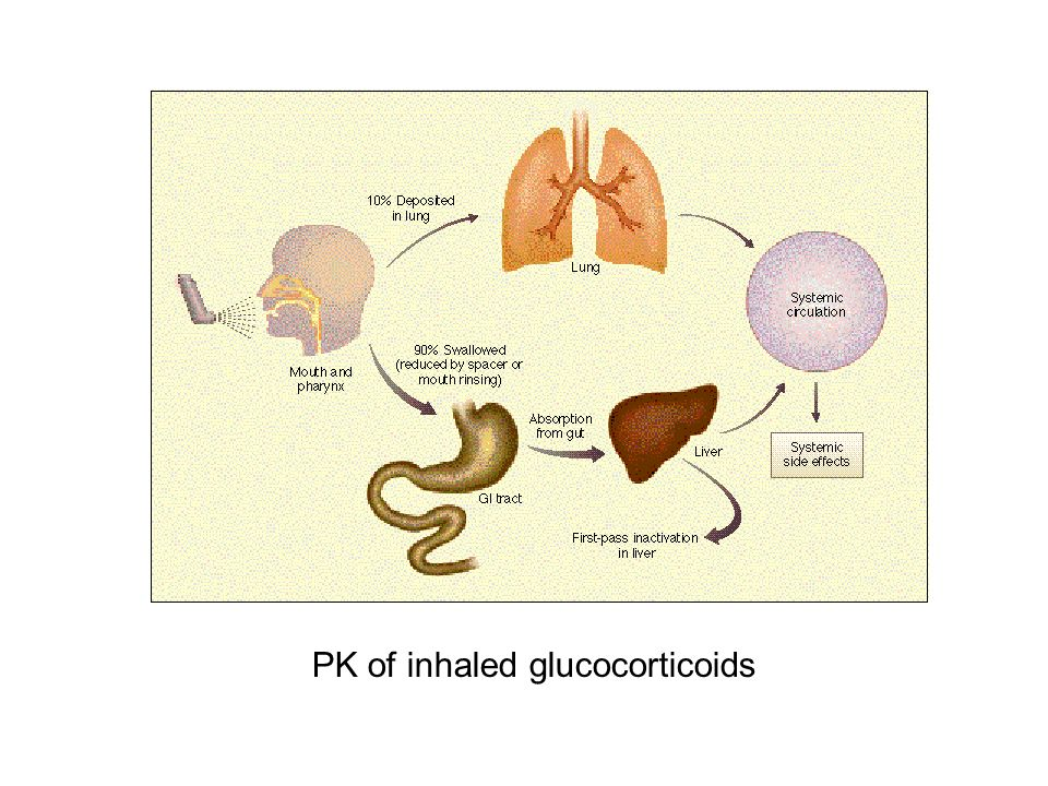 PK of inhaled glucocorticoids