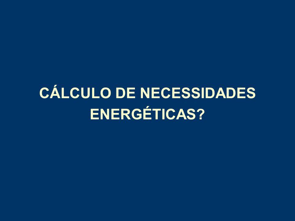 CÁLCULO DE NECESSIDADES ENERGÉTICAS