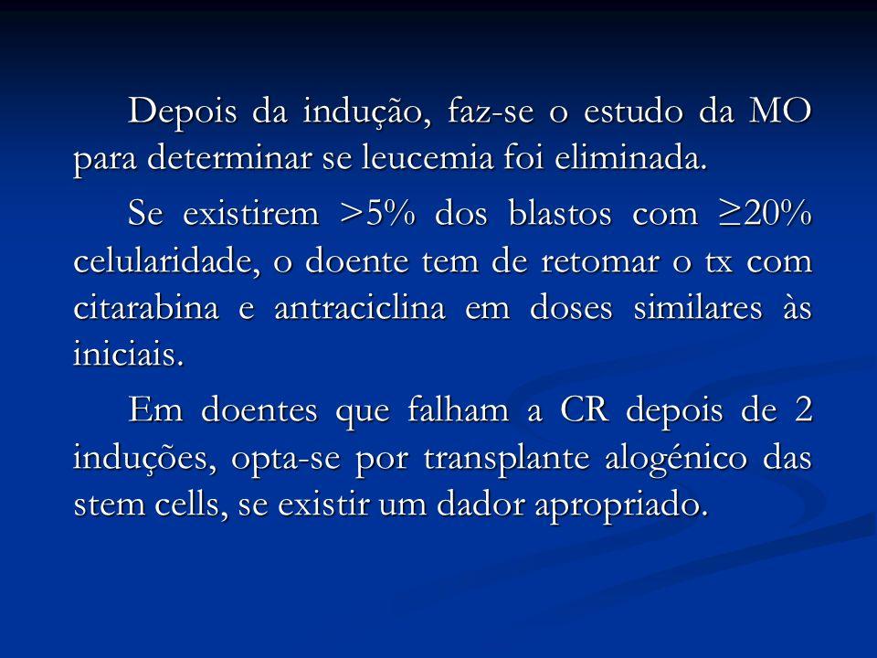 Depois da indução, faz-se o estudo da MO para determinar se leucemia foi eliminada.