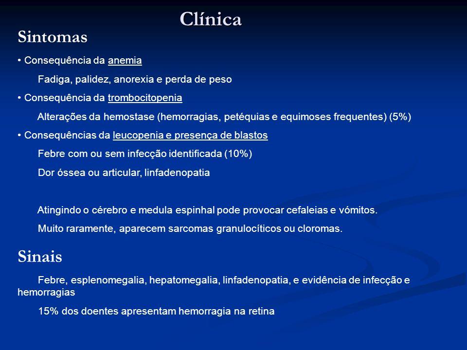 Clínica Sintomas Sinais Consequência da anemia