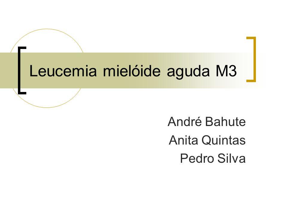 Leucemia mielóide aguda M3