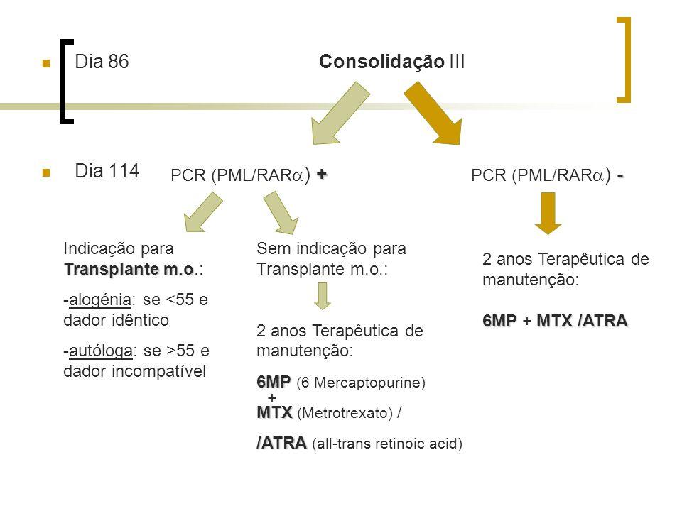 Dia 86 Consolidação III Dia 114 PCR (PML/RAR) + PCR (PML/RAR) -