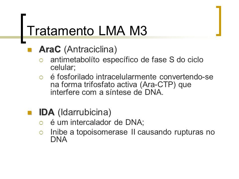 Tratamento LMA M3 AraC (Antraciclina) IDA (Idarrubicina)