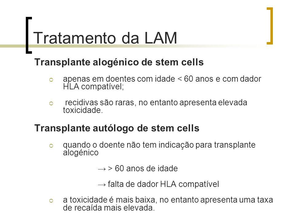 Tratamento da LAM Transplante alogénico de stem cells