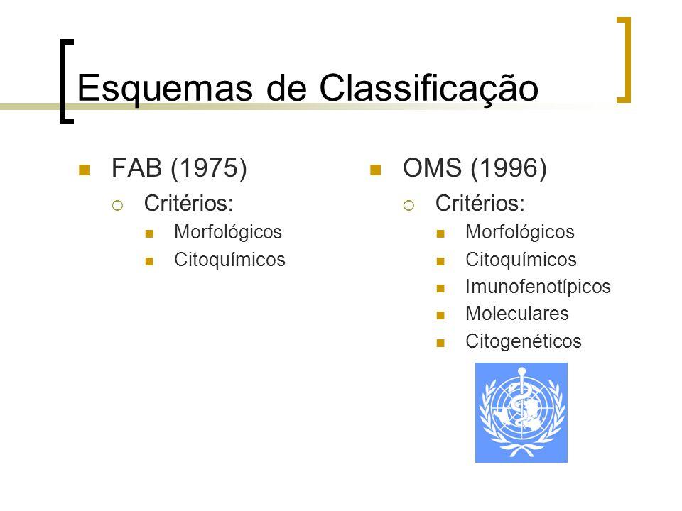Esquemas de Classificação