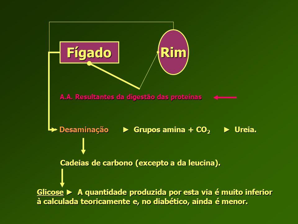 Rim Fígado Desaminação ► Grupos amina + CO2 ► Ureia.