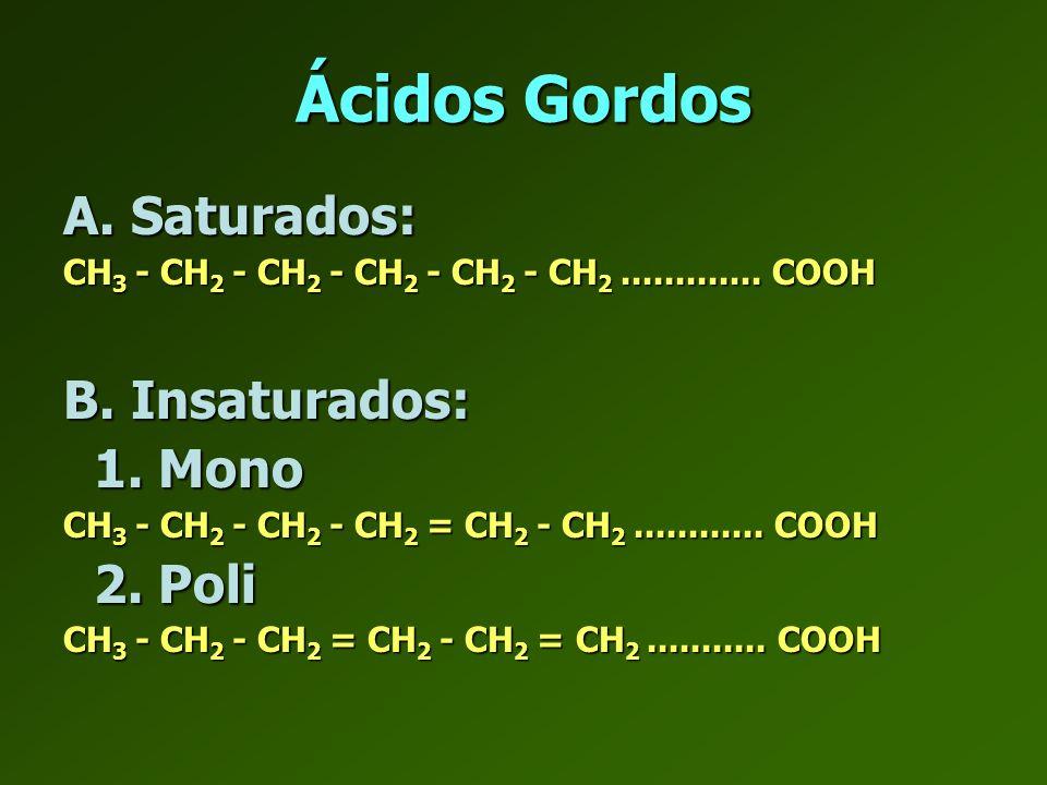 Ácidos Gordos A. Saturados: B. Insaturados: 1. Mono 2. Poli