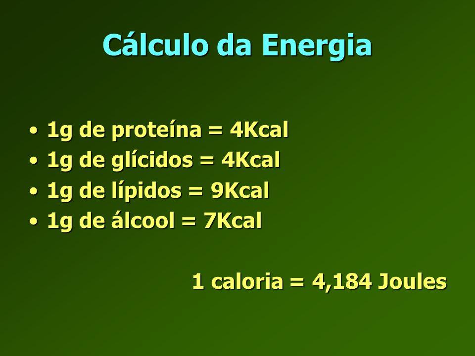 Cálculo da Energia 1g de proteína = 4Kcal 1g de glícidos = 4Kcal