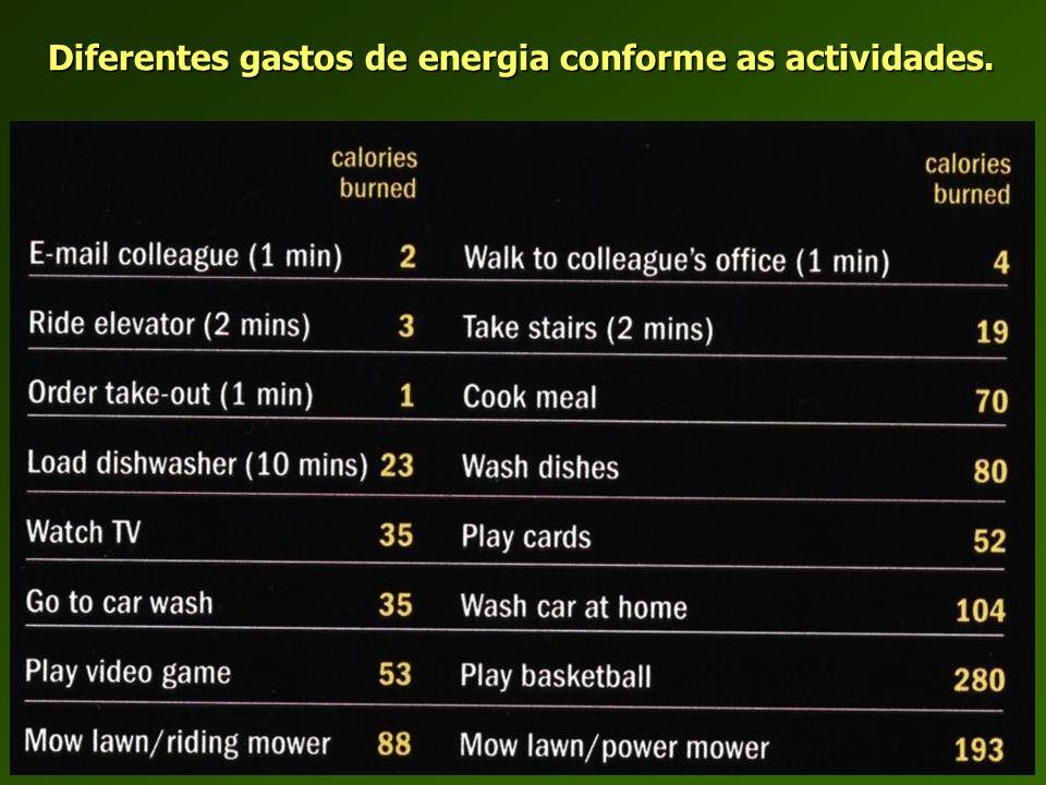 Diferentes gastos de energia conforme as actividades.