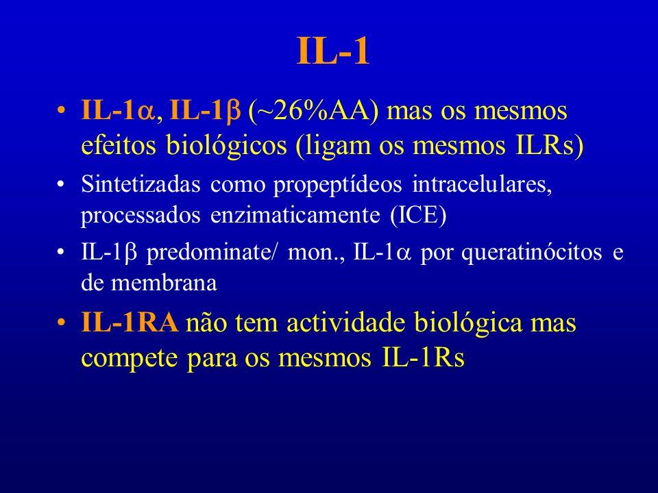 IL-1IL-1a, IL-1b (~26%AA) mas os mesmos efeitos biológicos (ligam os mesmos ILRs)
