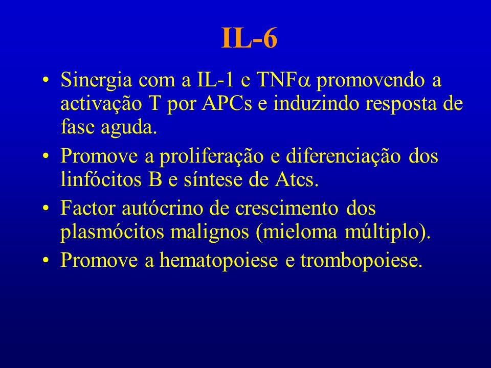 IL-6 Sinergia com a IL-1 e TNFa promovendo a activação T por APCs e induzindo resposta de fase aguda.