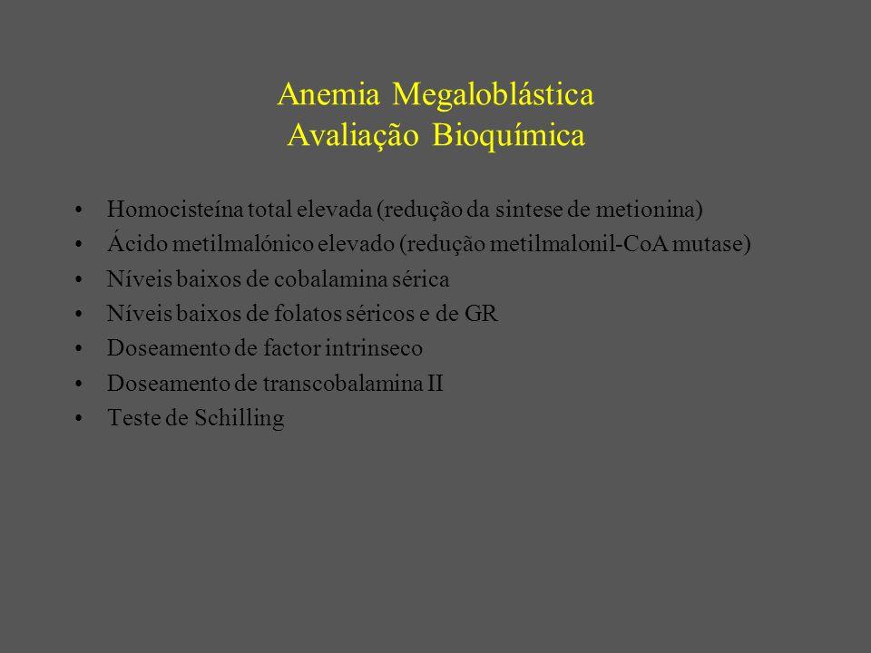 Anemia Megaloblástica Avaliação Bioquímica