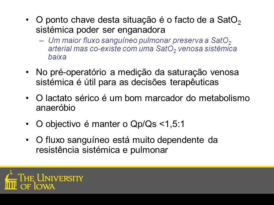 O lactato sérico é um bom marcador do metabolismo anaeróbio