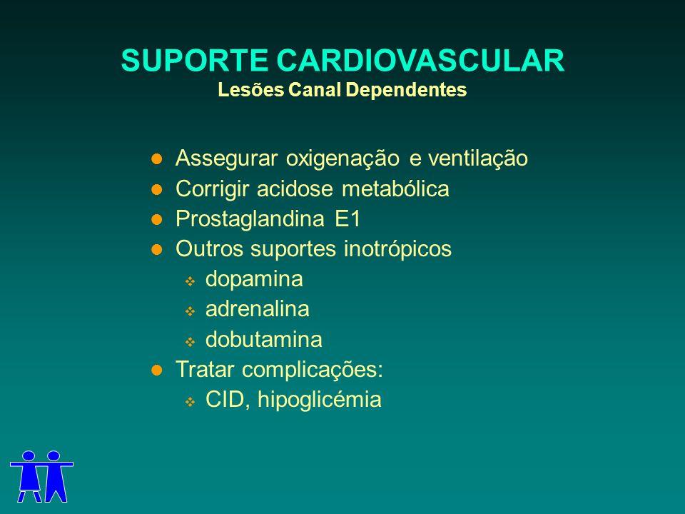 SUPORTE CARDIOVASCULAR Lesões Canal Dependentes