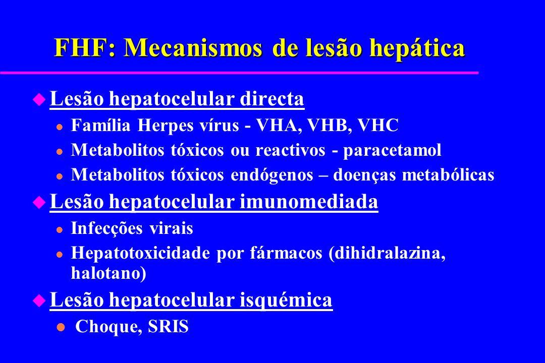 FHF: Mecanismos de lesão hepática