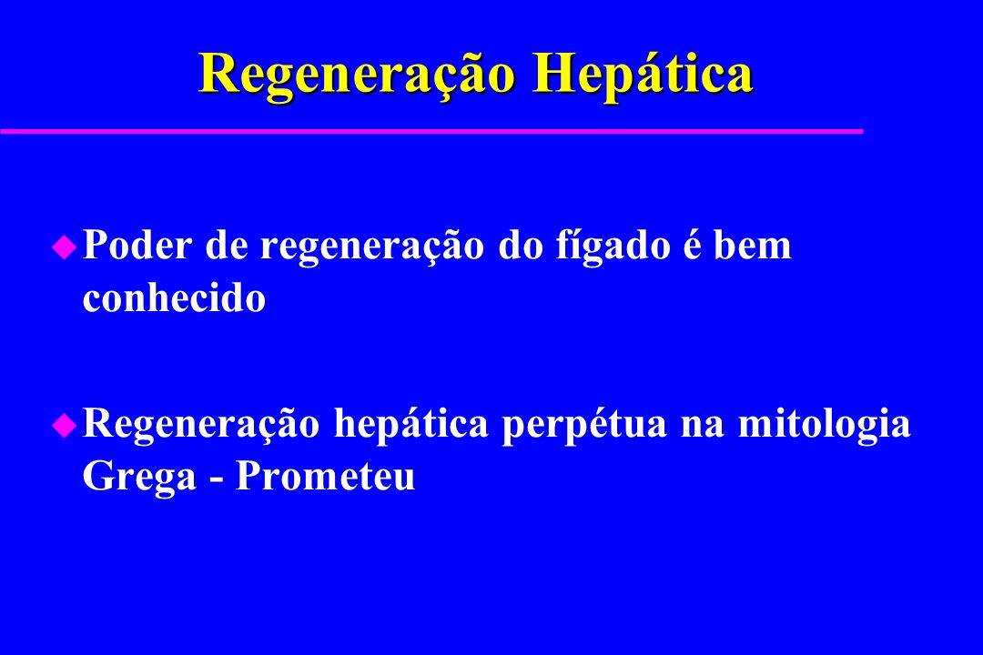 Regeneração Hepática Poder de regeneração do fígado é bem conhecido
