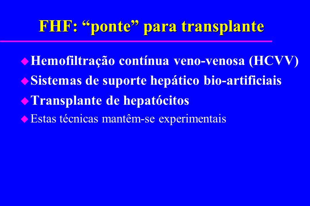 FHF: ponte para transplante