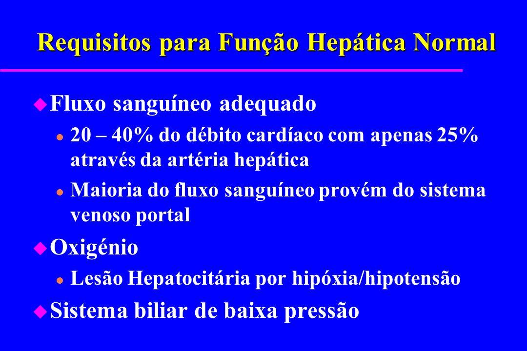 Requisitos para Função Hepática Normal