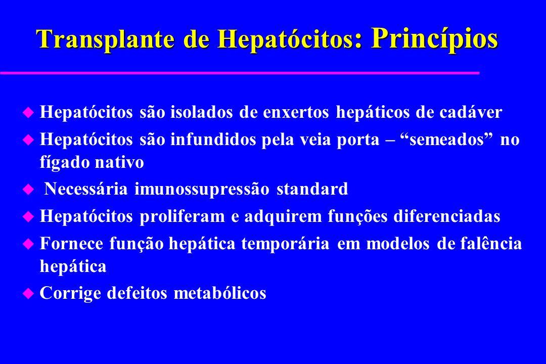 Transplante de Hepatócitos: Princípios