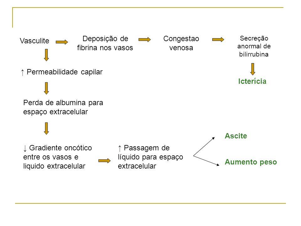 ↑ Permeabilidade capilar
