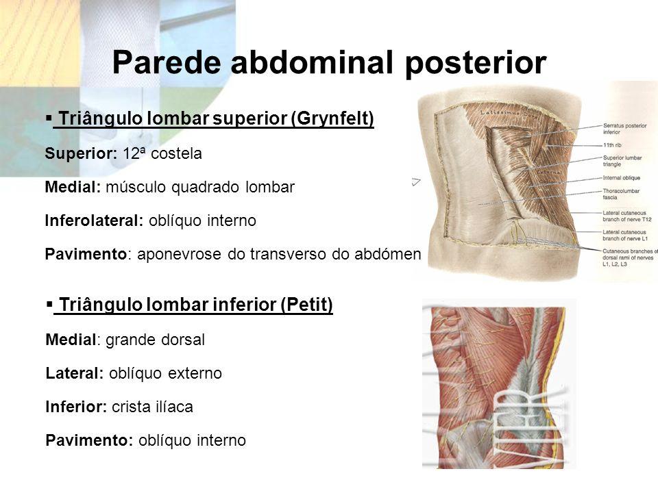 Parede abdominal posterior