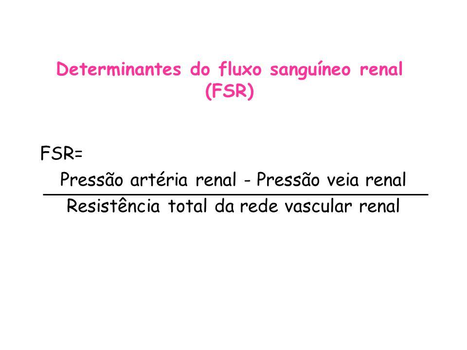 Determinantes do fluxo sanguíneo renal (FSR)