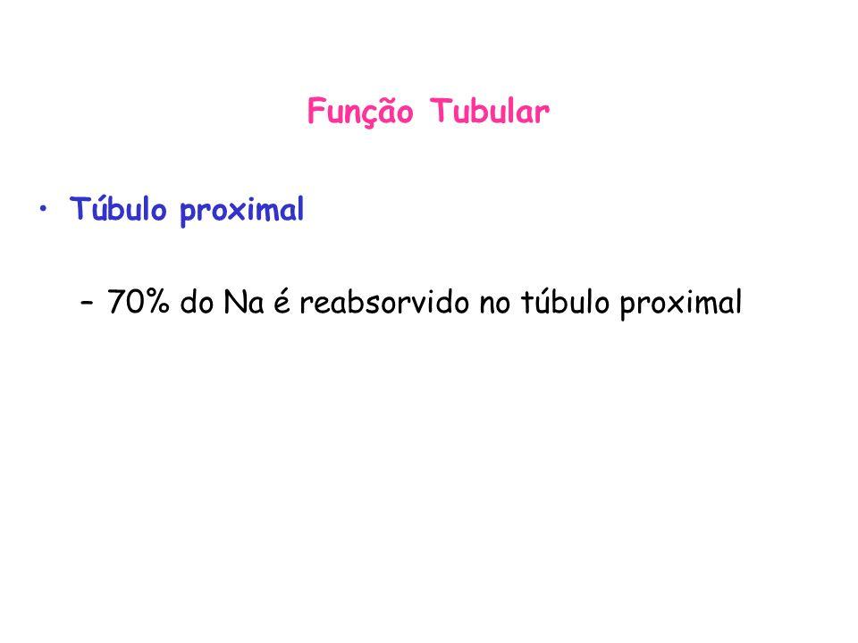 Função Tubular Túbulo proximal