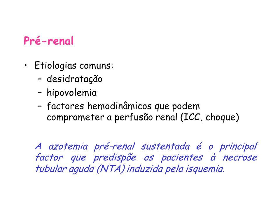 Pré-renal Etiologias comuns: desidratação hipovolemia