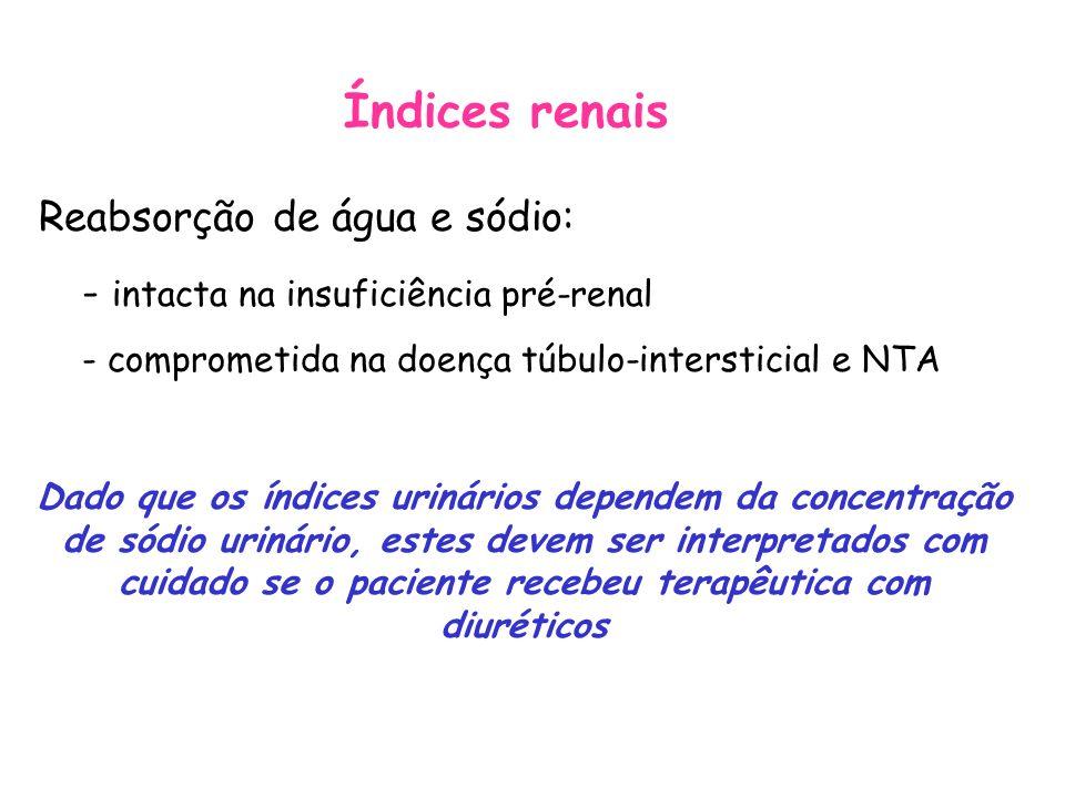 Índices renais - intacta na insuficiência pré-renal