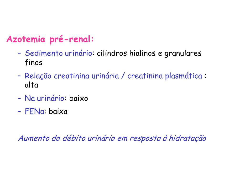 Azotemia pré-renal: Sedimento urinário: cilindros hialinos e granulares finos. Relação creatinina urinária / creatinina plasmática : alta.